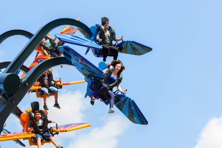 SkyFly11-min-1024x771